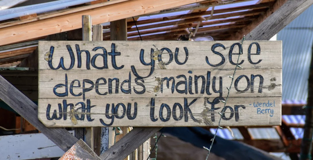 What you see depends mainly on what you look for